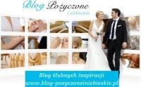 News/Blog Headlines